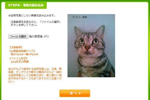 猫の履歴書アップロード